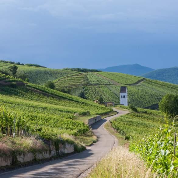 Strada dei Vini d'Alsazia